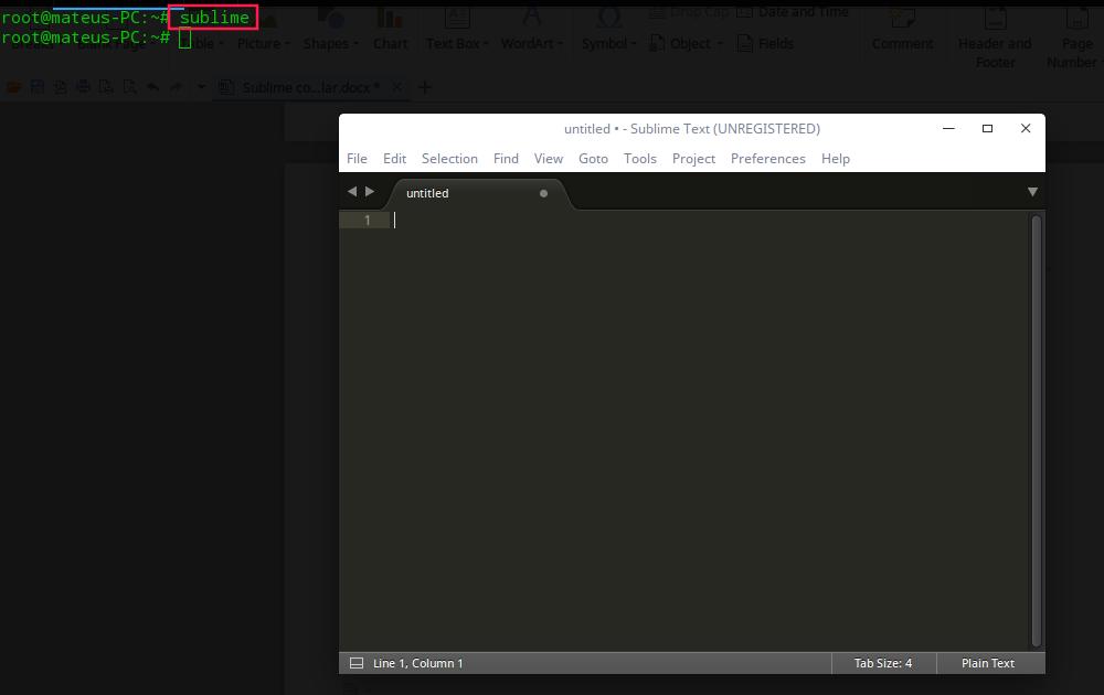 Veja como instalar o Sublime no Linux passo a passo