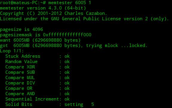 Como rodar um teste de memória com MEMTESTER no Linux
