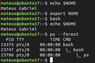 LPIC-1: Gerenciar variáveis locais e ambiente no Linux