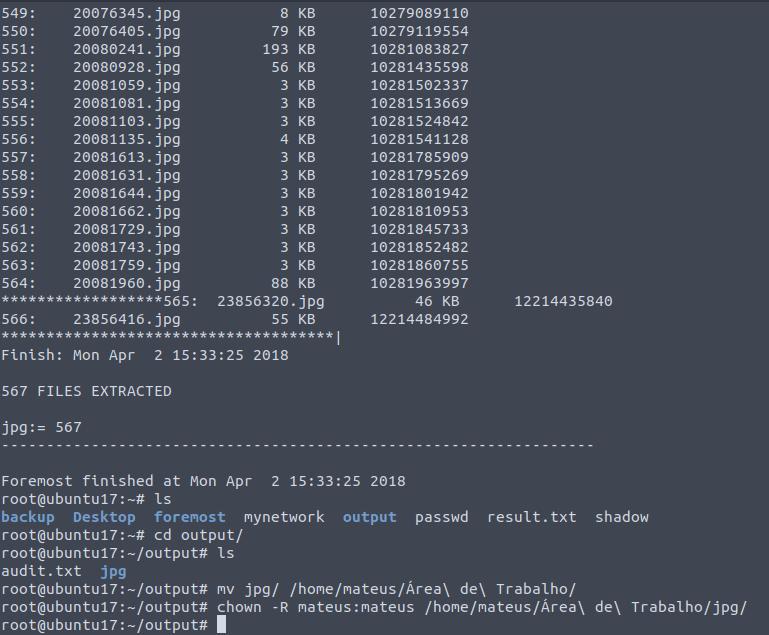 Recuperando dados que você apagou com a ferramenta Foremost no Linux