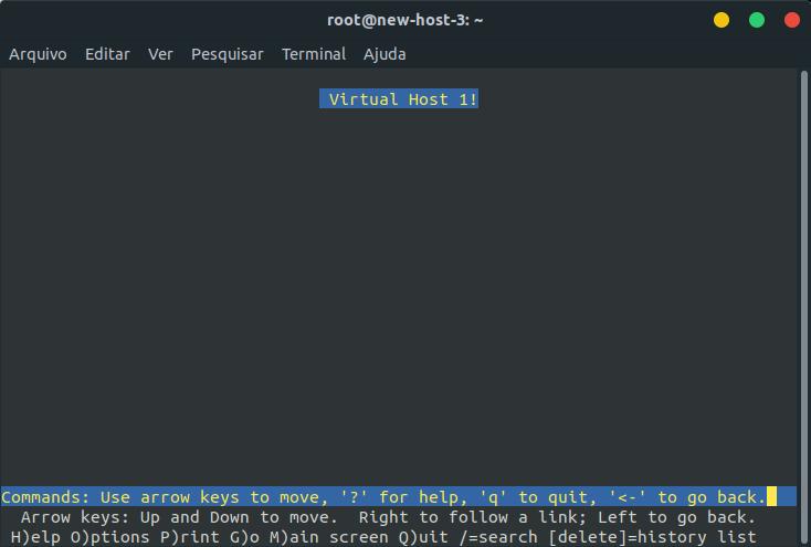 Instalar e configurar Virtual Host usando NGINX no Ubuntu Server 16.04
